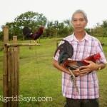 Aaron Gonzalez Game Farm and Breeding History