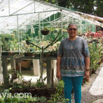Bacolod Biz: Hazelyn Guerrero Cactus Plants and Tips on How to Take Care of Cactus