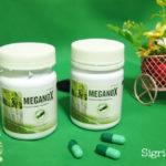 Meganox: The Super Antioxidant from Sugarcane