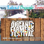 Negros Organic Farmers Festival: Tips and Reminders for Buyers