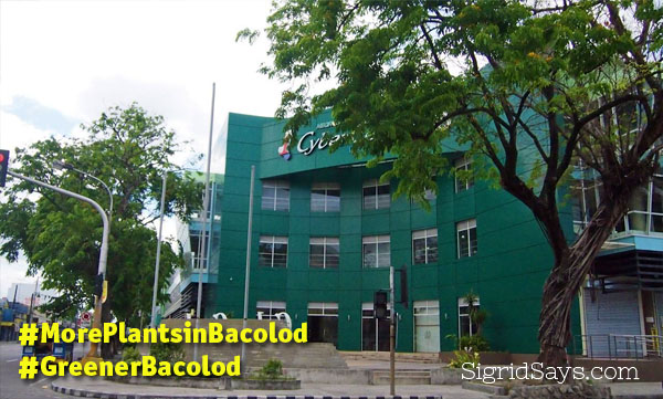 Bacolod Needs More Plants and Trees