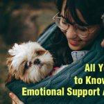 Emotional Support Animals  Everything You Need to Know