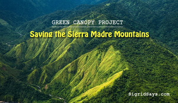 Sierra Madre Mountains reforestation - Lucio Tan III - Allianz - environment - green canopy project - tree planting