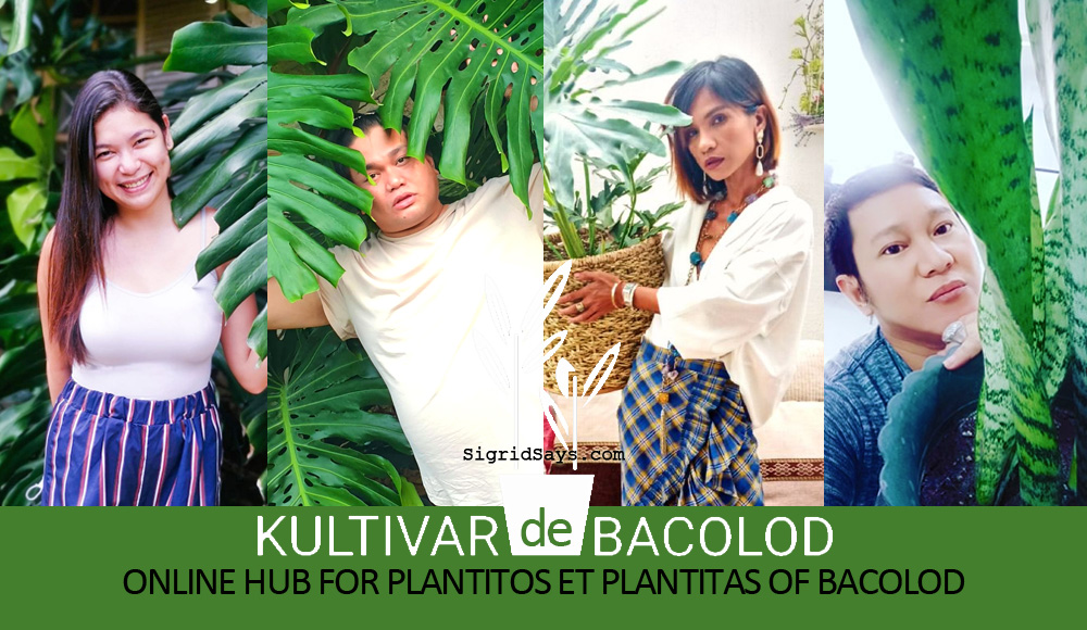 Kultivar de Bacolod: Online Hub for Plantitos and Plantitas
