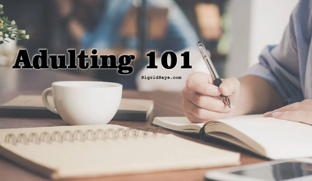 adulting 101 - adulting tips - responsibility - work ethics - finances - domestic - planning